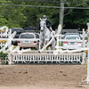 BRV Charity Horse Show - Saturday-9879