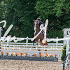 BRV Charity Horse Show - Saturday-9632