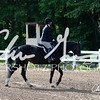 BRV Charity Horse Show - Saturday-9397