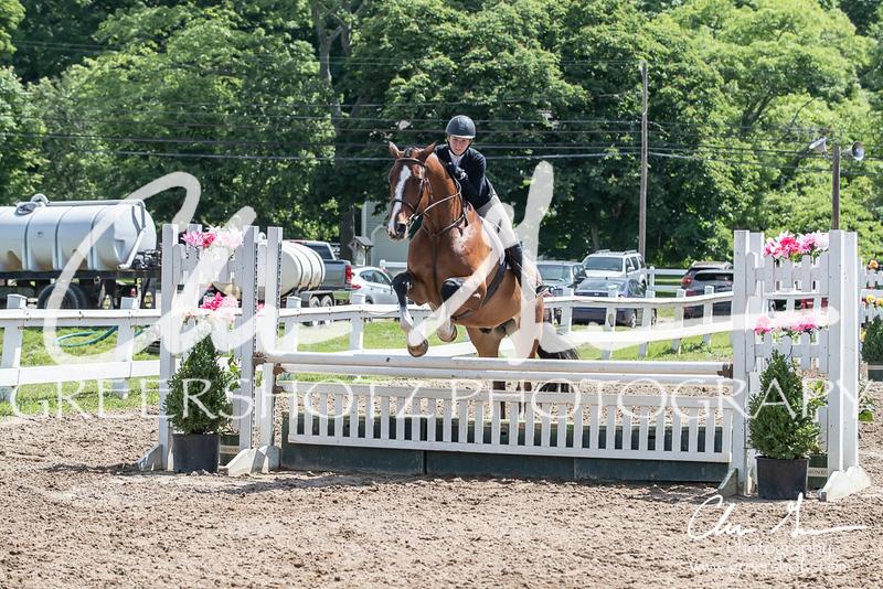 BRV Charity Horse Show - Saturday-9662