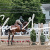 BRV Charity Horse Show - Saturday-9930