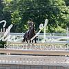 BRV Charity Horse Show - Saturday-9505