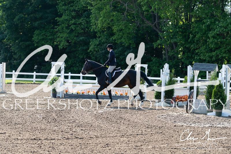 BRV Charity Horse Show - Saturday-9431