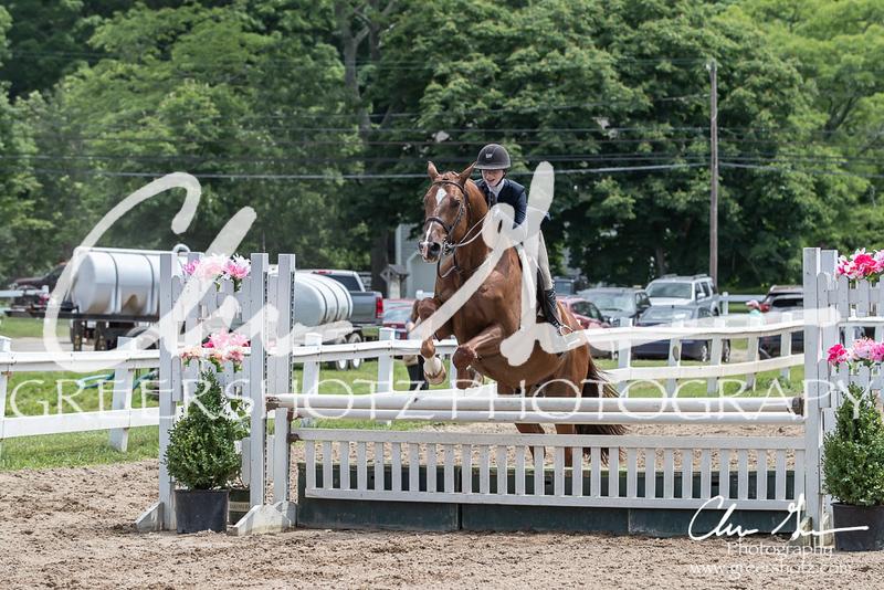 BRV Charity Horse Show - Saturday-9784