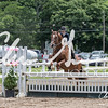BRV Charity Horse Show - Saturday-9784