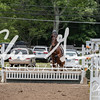 BRV Charity Horse Show - Saturday-9871
