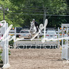 BRV Charity Horse Show - Saturday-9800