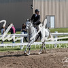 BRV Charity Horse Show - Saturday-9542