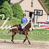 BRV Charity Horse Show - Saturday-9519
