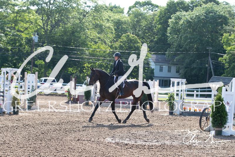 BRV Charity Horse Show - Saturday-9417