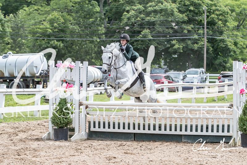 BRV Charity Horse Show - Saturday-9734