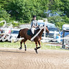 BRV Charity Horse Show - Saturday-9459