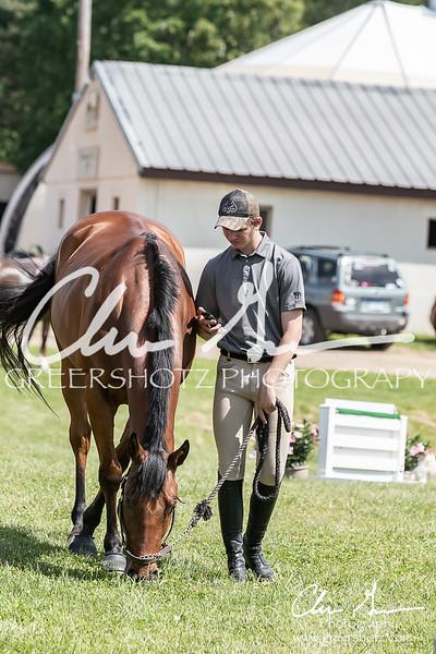 BRV Charity Horse Show - Saturday-9669
