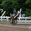 BRV Charity Horse Show - Saturday-9886
