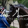 BRV Charity Horse Show - Saturday-9937