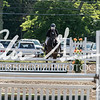 BRV Charity Horse Show - Saturday-9532