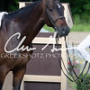 BRV Charity Horse Show - Saturday-9375