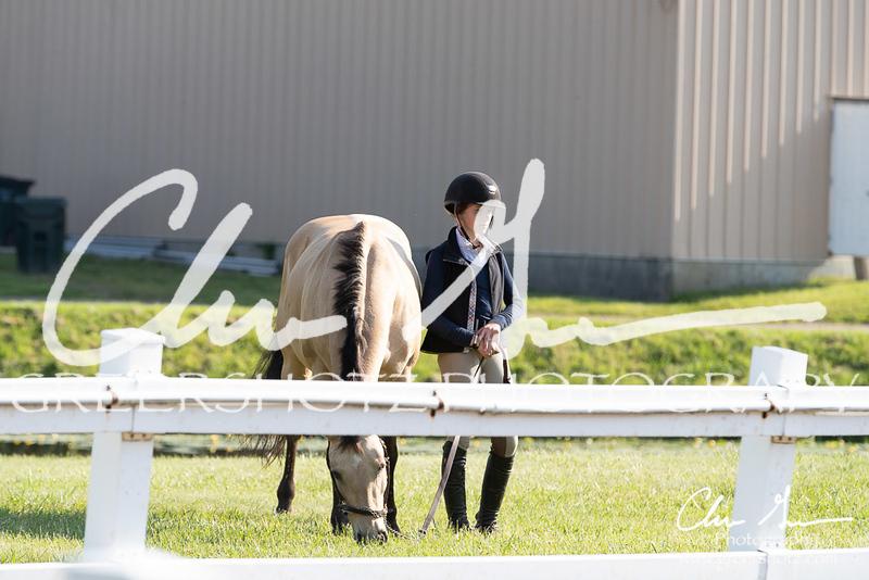 BRV Charity Horse Show - Saturday-9376