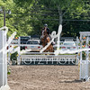 BRV Charity Horse Show - Saturday-9611