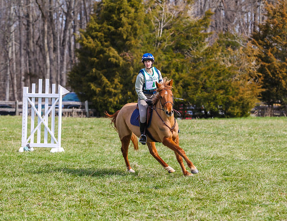 Calais Horse Trials/Green Level 3-23-2013