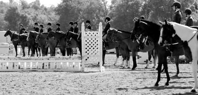 Equestrian Favorites