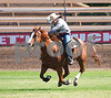 woman's barrel racing,
