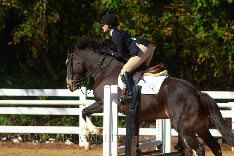 @ College of Charleston Show at Storybook Farms