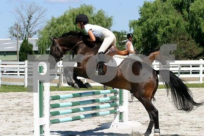 horse 0303