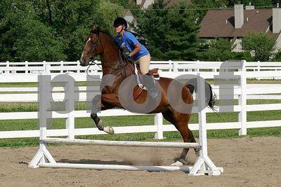 horse 0390