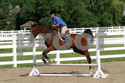 horse 0387