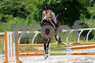 horse 0255