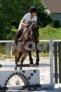 horse 0265