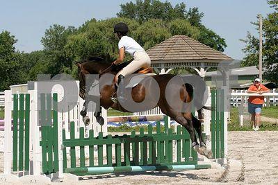 horse 0305