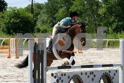 horse 0261