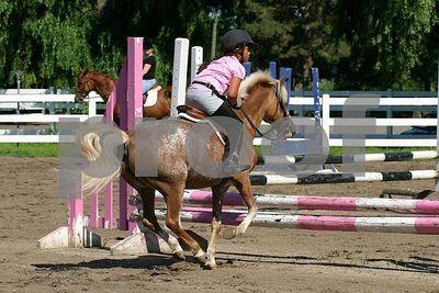 horse 0213