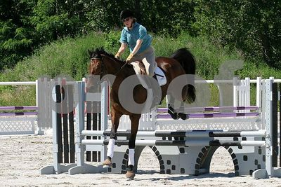 horse 0330