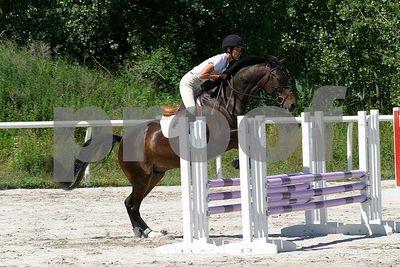 horse 0300