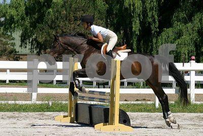 horse 0298