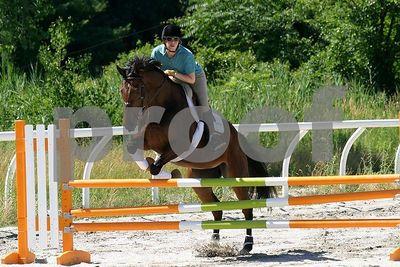 horse 0259