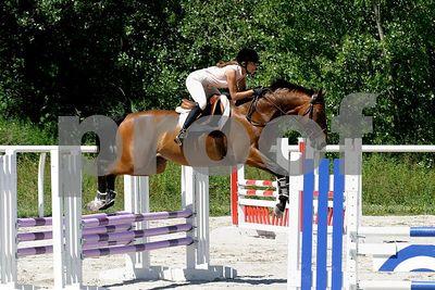 horse 0324