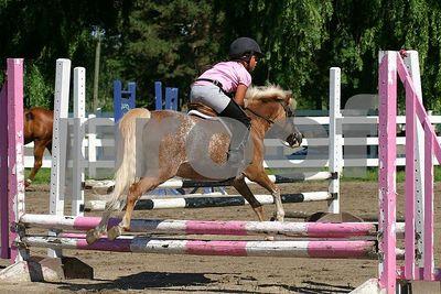 horse 0214
