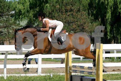 horse 0322