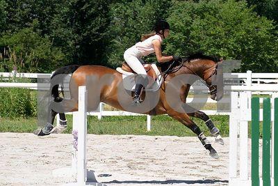 horse 0325