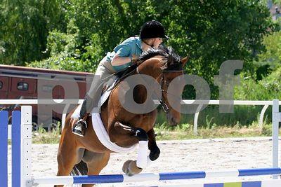 horse 0337
