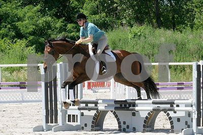 horse 0332