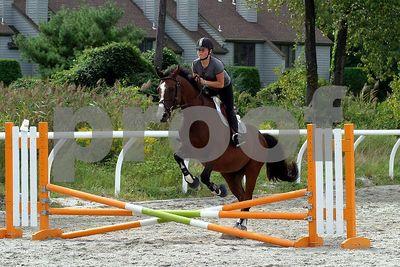 horse2470