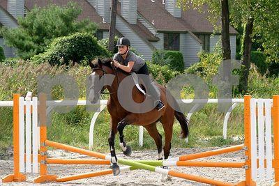 horse2468