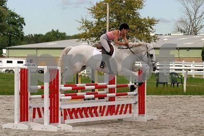 horse2493