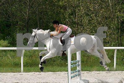 horse2525