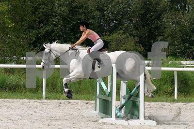 horse2507